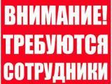 Фотография объявления Врач - узи