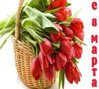 Команда Nacar поздравляет вас с самым теплым, светлым и солнечным весенним праздником — 8 Марта