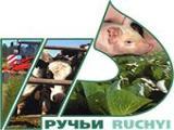 Требуются продавцы. Реализация молочной и мясной продукции собственного производства. Стационарные м...