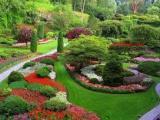 Ландшафтный дизайн А Вы хотите сделать Ваш садовый или придомовой участок райским местом, где можно