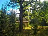 К продаже предлагаю шикарный земельный участок 15 соток хуторного типа (возможно расширение) под стр...