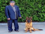 Обучаю щенков и подросковых по ОКД -ЗКС-ЩКД и исправляю ошибки хозяев. Помогаю повязать питомцев. и