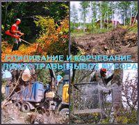 Спиливание деревьев и поросли в Воронеже, Воронежской области. Спиливание деревьев и корчевание пней...