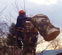 МУП «Орскбытсервис» оказывает услуги по опиловке деревьев, уборки и благоустройство территории, пос...